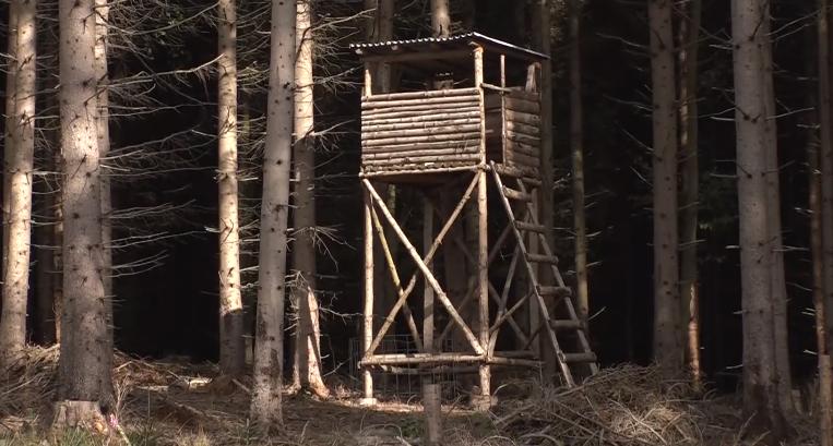 الطفلة الألمانية جوليا على قيد الحياة بعد يومين من اختفائها في الغابة